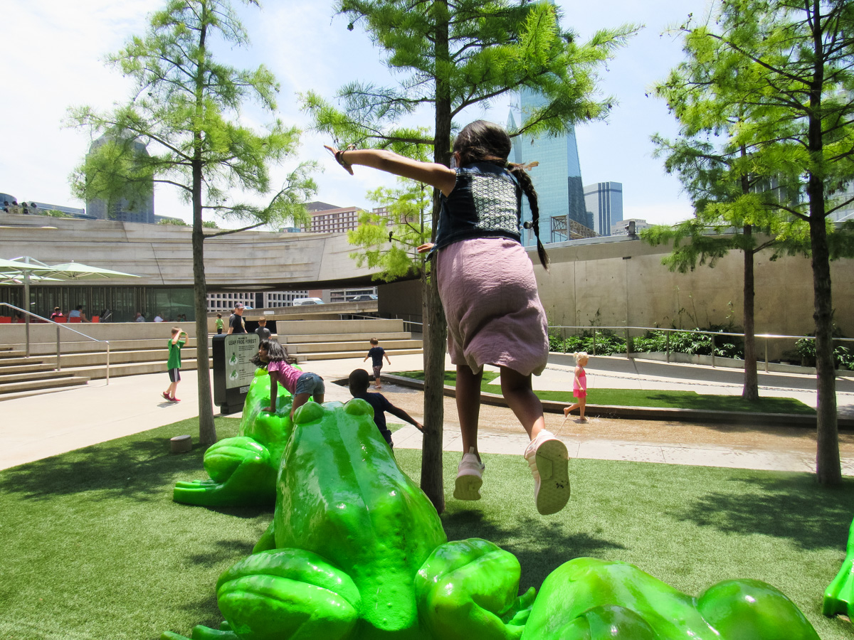 Dive into Summer Learning: Time to go to the Perot!