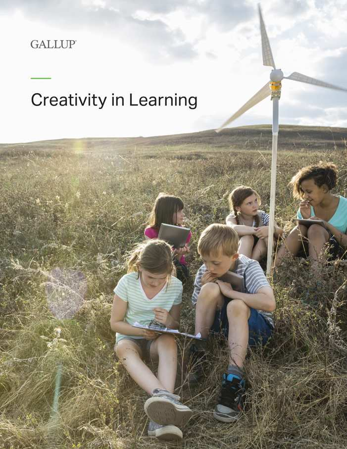 Creativity in Learning