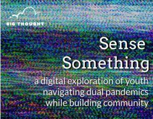 Sense Something